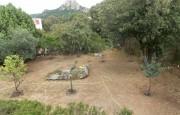 San Pantaleo apartment for sale_33