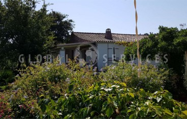 Olbia S. Pantaleo, villa with outbuilding for sale