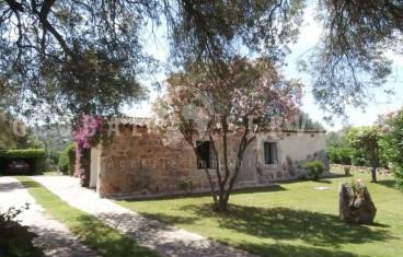San Pantaleo, ancient farmhouse for sale