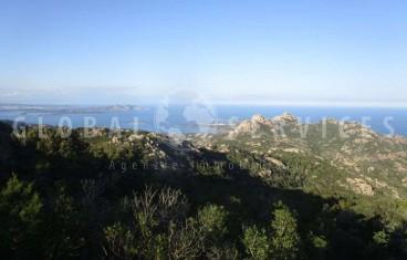 Arzachena Monte Moro. Rustico casale vendita